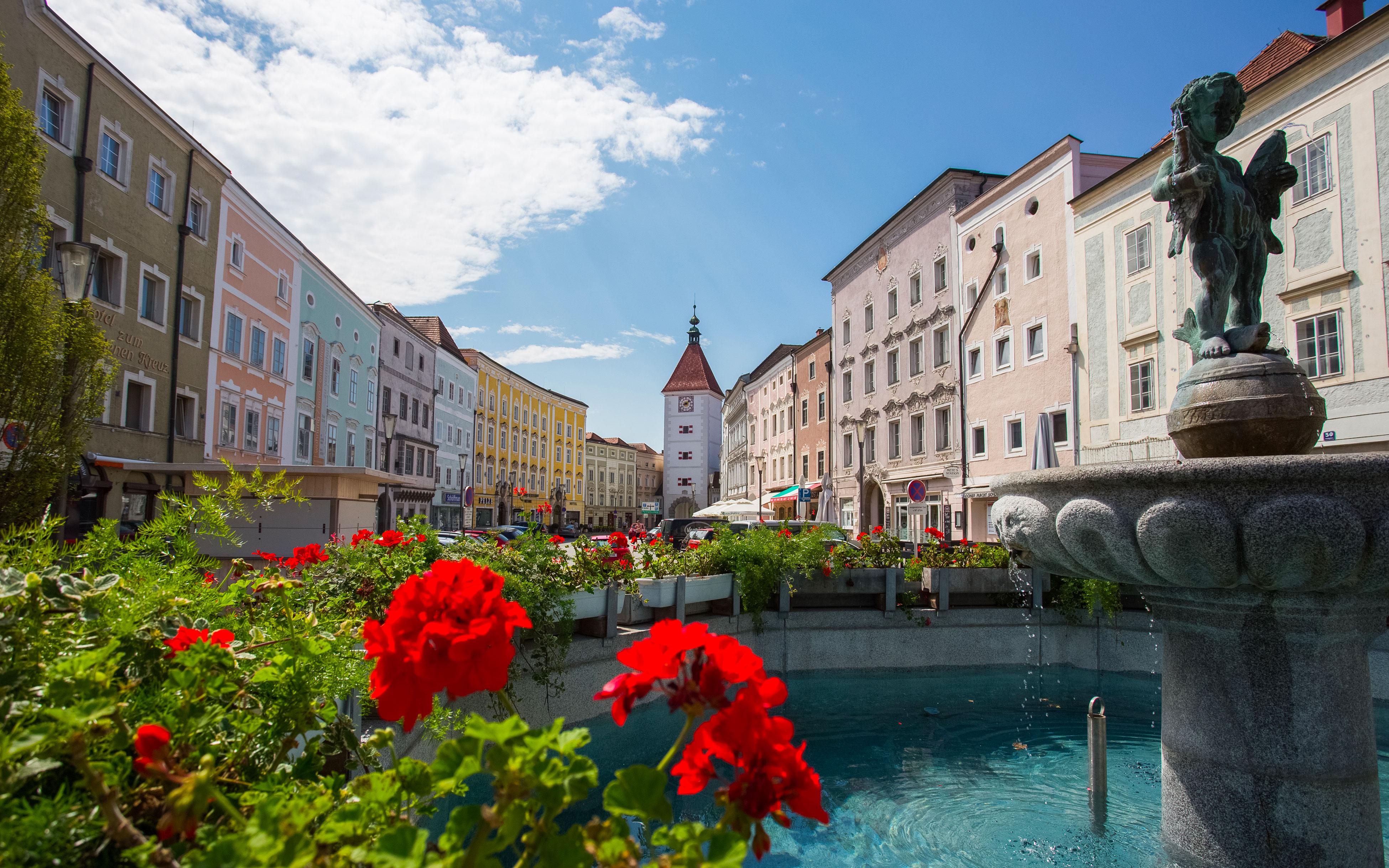 Coaching in Wels und Linz – Gabriele Haas